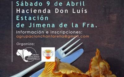 V JORNADAS, COCINAR CON SETAS JIMENA DE LA FRONTERA